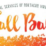 LSNV Fall Ball